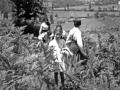 19620700-Campo Coccinelle-4